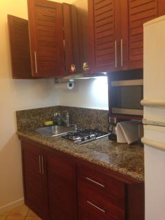 Full size kitchen (Refrigerator, Freezer, stainless sink and gas cooking range, vent, & all utensils