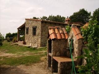 Barbacoa y fuente
