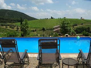 Prime Chianti Estate with privacy and views!, Siena