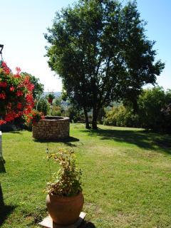 Une partie du jardin où il fait bon se reposer. Seul, le chant des oiseaux vous troublera.