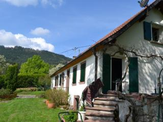 Paradis sur la route des vins / PARADISE IN ALSACE, Thannenkirch