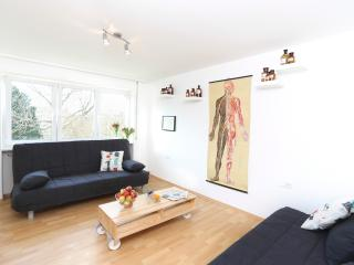 Rippoldsauerstr city apartment with nice kitchen, Stuttgart