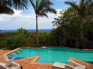 Roatan's Newest Luxury Estate - Promo!, First Bight