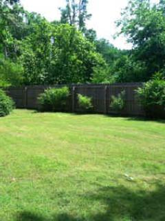 Spacious yard--room for volleyball or catch.