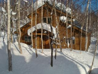 Harmony House- The Premier Resort Home in Niseko Village/Higashiyama area