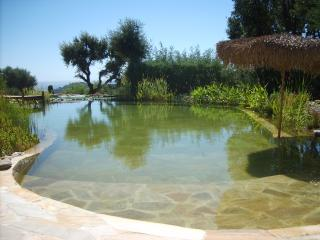 Beau studio2p dans belle villa vue mer,piscine bio, Sainte-Maxime