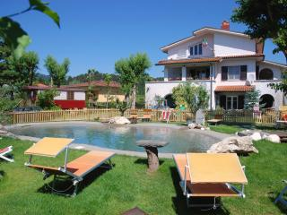 Dreamers - a Villa with pool in Lucca
