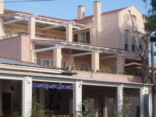 COZY APARTMENT BY THE SEA, NEAR CHALKIDIKI!
