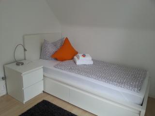 Spacious and modern apartment in suburban Frankfurt/Main