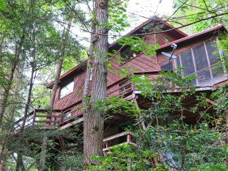 Pigeon River Hideaway-on the LITTLE PIGEON RIVER g