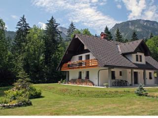 Villa Stare, Begunje na Gorenjskem