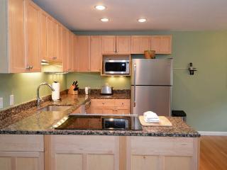 Silverglo Codominiums Unit 307, Aspen