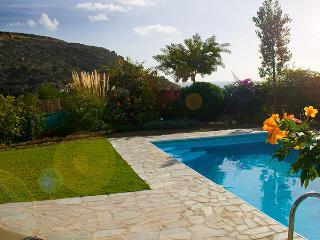 Pretty garden and private swimming pool