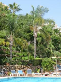 La Maestranza garden/ pool area