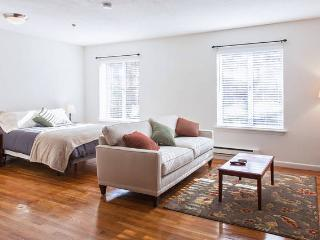 Drop Dead Gorgeous Spacious Studio, Boston