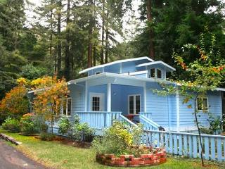 """Blue Cherry"" Perfect  retreat!Close to town & River/Wineries!"