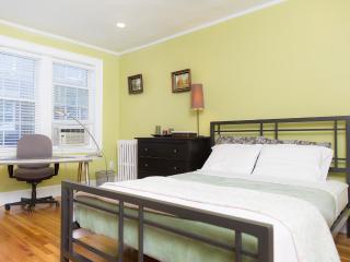 Updated/modern 1-bedroom condo - MIT/Harvard Area, Boston