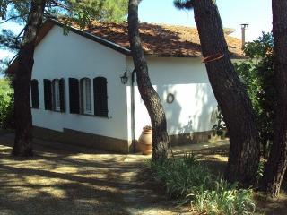 VILLA, SLEEPS 5  IN MERCATALE VAL DI PESA