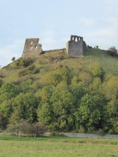 Dryslwyn Castle is a five minute drive away.