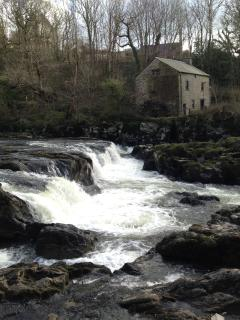 Cenarth Falls and coracles in Cilgerran are a short drive away.