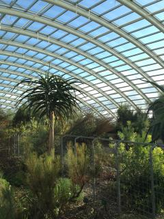 The Mediterranean glasshouse is the largest single-span glasshouse in the world.