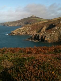 The Pembrokeshire Coast National park is only an hour away by car.