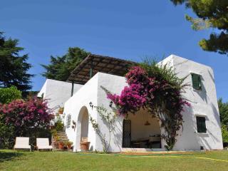 Casa Circeo, villa al mare con grande giardino, San Felice Circeo