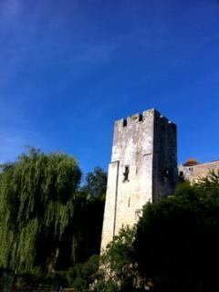 la tour de fortification, dite Tour Sarrasine