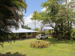 Magnifique villa creole au milieu d 'un beau jardi