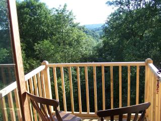 A view over the woods from the balcony of Keepers