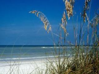 Upscale secluded beach, great sunsets!, Treasure Island