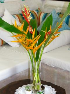 Fresh flowers from our garden greet our guests