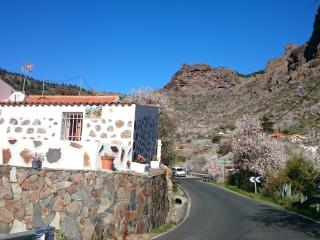 Country House Gran Canaria