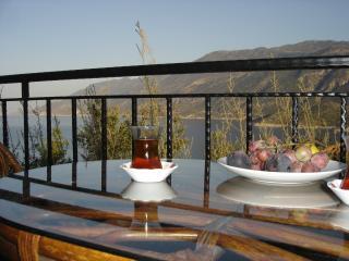 Villa Visne : luxury villa with private pool