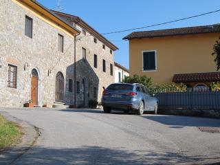 "Fabulous Apartment ""on the green"", Monsummano Terme"