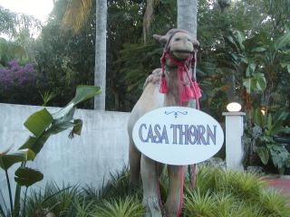 Casa Thorn Tiki Hut Room
