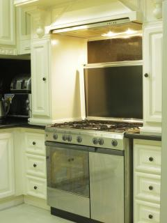 6 burner gas stove & oven