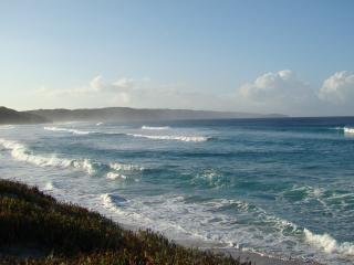 Ocean Beach Hideaway - House