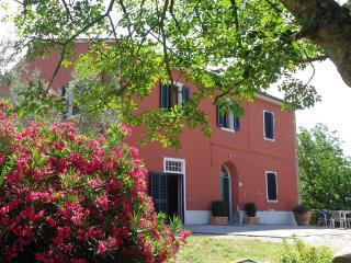 La casa di Marcello, Vinci