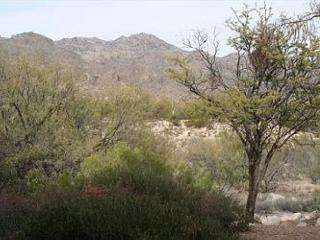 Stunning Mountain views-1st floor 2 bedrm - easy access from covered parking, Tucson