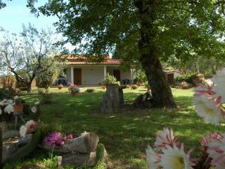 Agriturismo San Vincenzo, Sovana