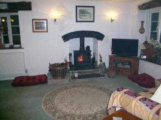 Real log burning stove