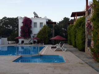 223 Apartment in Ortakent 6