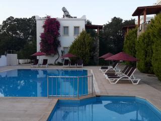 223 Apartment in Ortakent 8