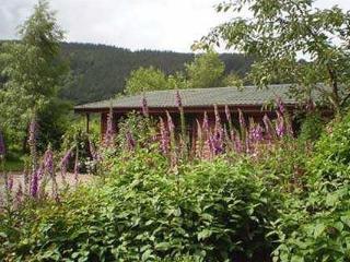 Edw Lodge - Boatside
