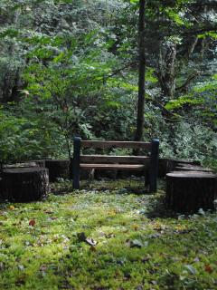 Have a seat and listen to the creek rush by