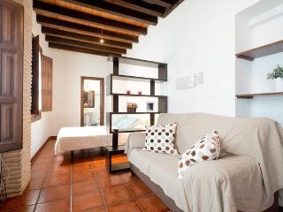 Apartamento/Estudio con vistas a la Alhambra, Granada