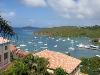 WOW !!!! 5 MINUTE WALK TO TOWN- GREAT VIEW OF BAY, Cruz Bay