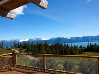 The Road's End Chalet - 3br/2 full bathroomos, Homer