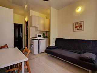 Comfortable Studio Apartment on Grafsky